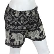 Elephant Print Summer Shorts