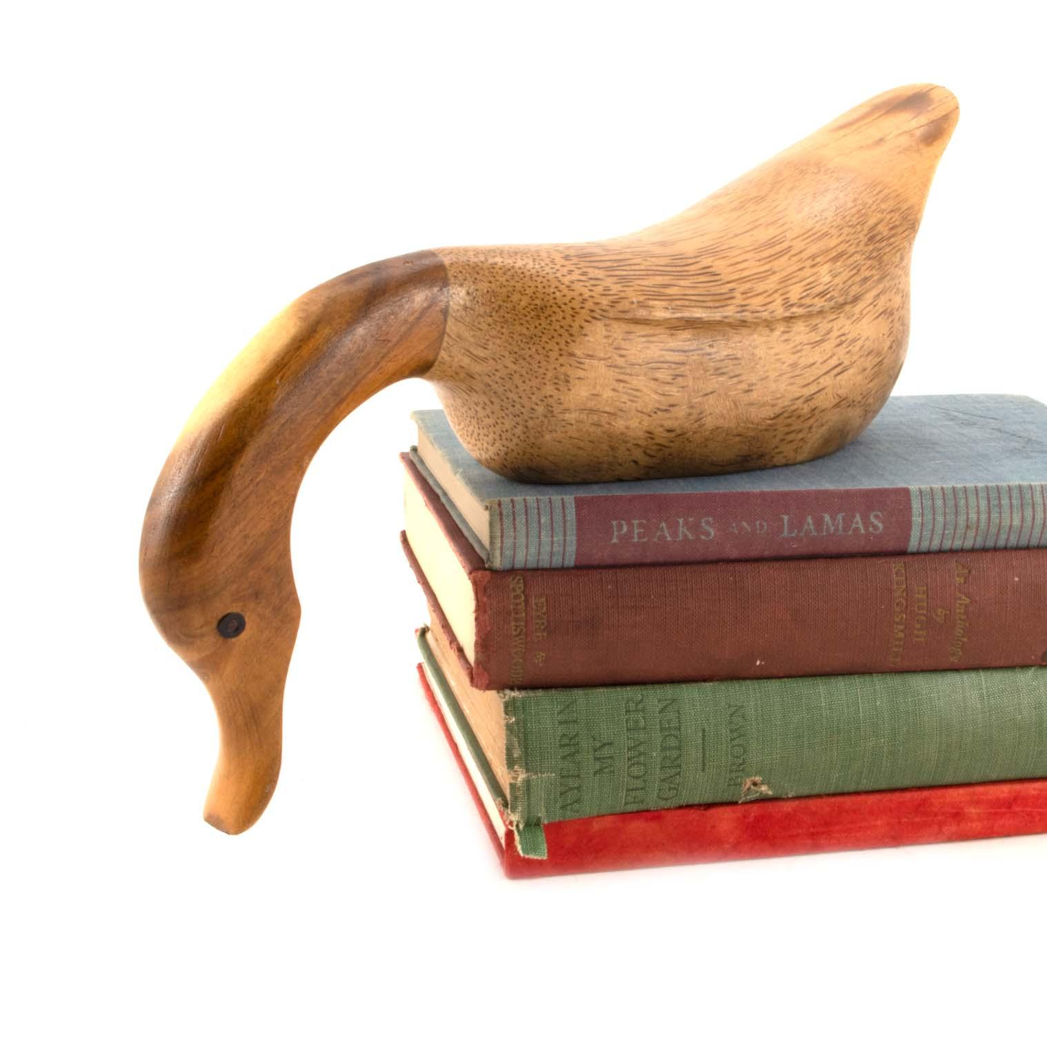Natural Shelf Duck
