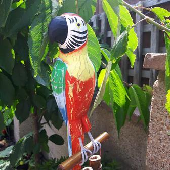 Macaw Windchime