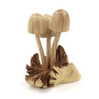 Parasite Wood Mushrooms